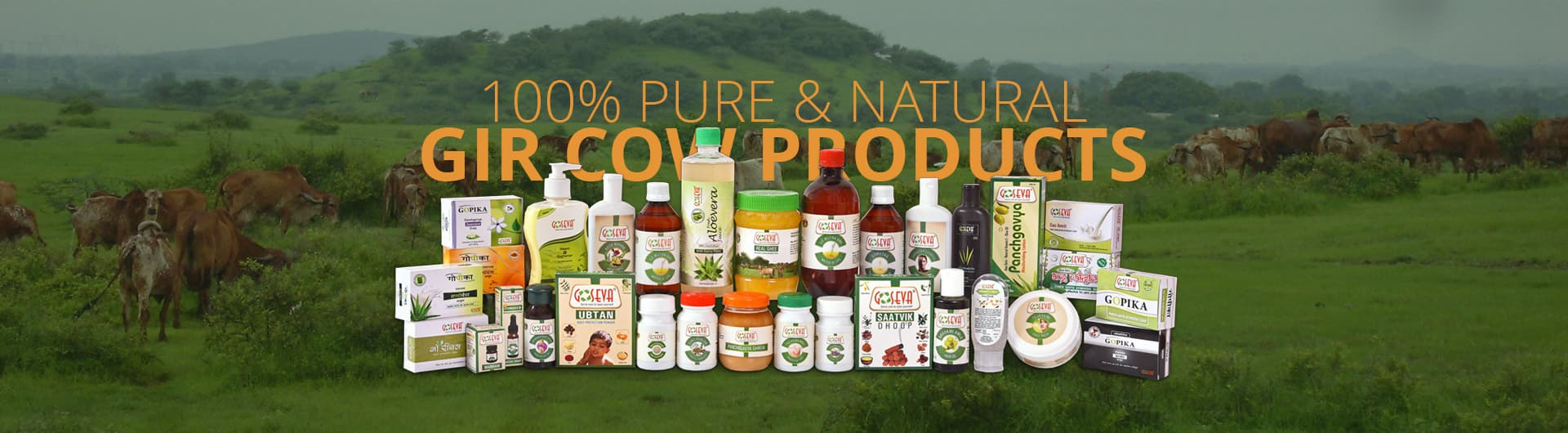 Gir Cow Products